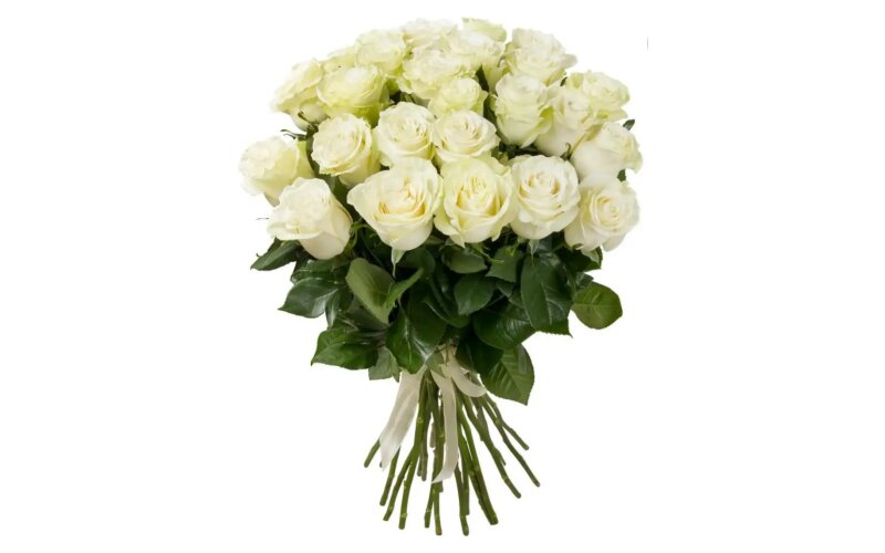 Роза белая 60 см