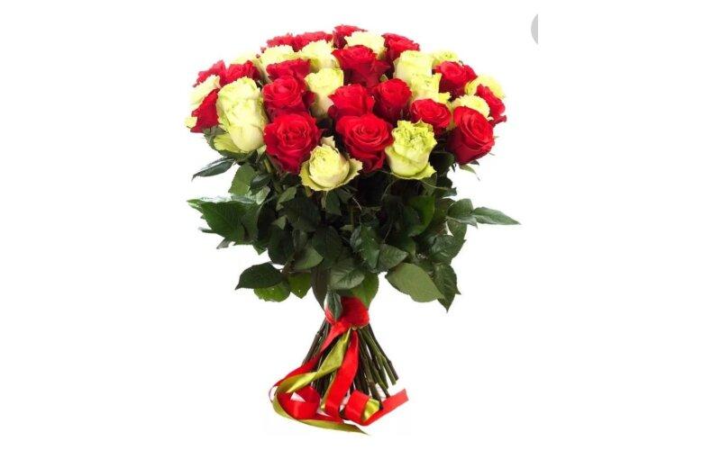 Роза микс 50см