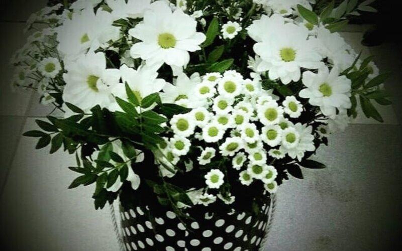 Коробка с цветами «Ромашки»
