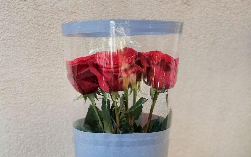 Букет «7 роз в упаковке»