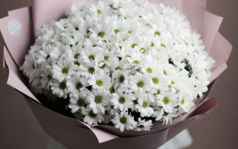 Букет Из 11 Кустовых Хризантем В Матовой Упаковке