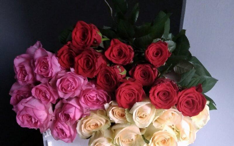 Розы микс (50 см)