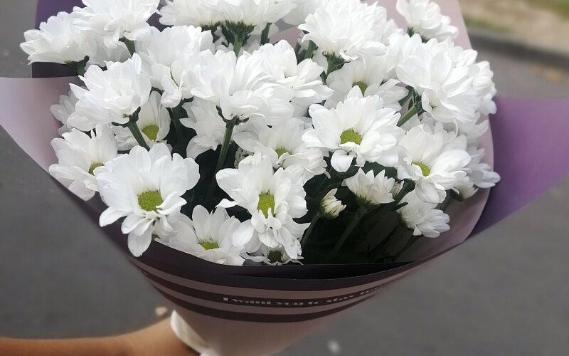 Букет из 5 хризантем