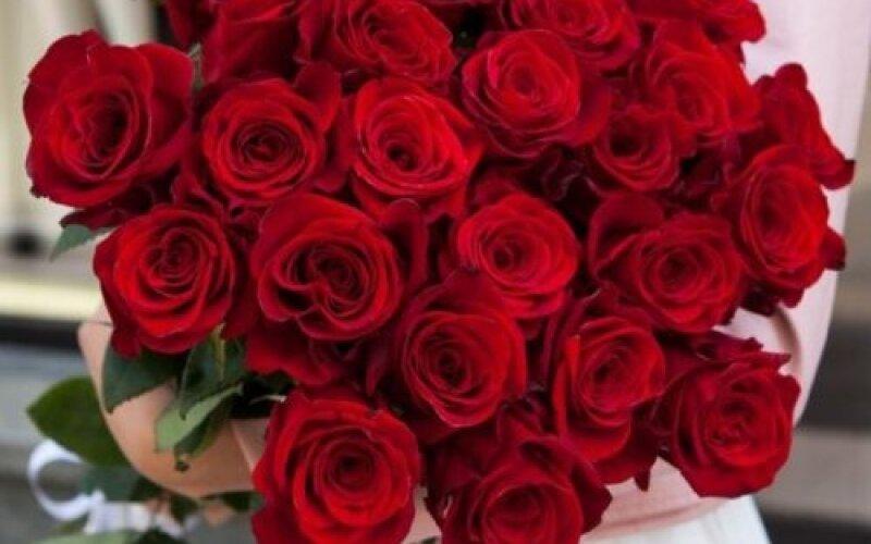 Розы 50см № 113