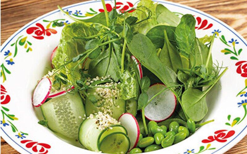 Зелёный салат с бобами и коноплёй, с медовым соусом с французской горчицей