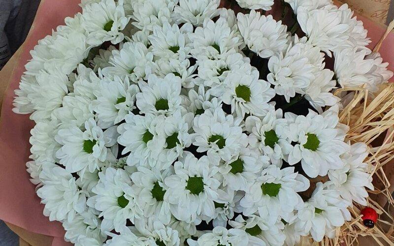 Букет цветов «Ромашковое поле»